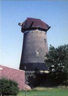 ETTEN-LEUR (N.Br.) - Molen/moulin - De Verdwenen Molen Van Coppens (romp) In 1961. Gesloopt In 1974. - Niederlande