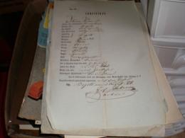 Certifikat Begec 1856 - Historical Documents