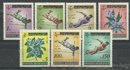 Afghanistan 1962, Giornata Dell'insegnante  (**), Serie Completa Con Posta Aerea - Afghanistan