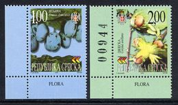 BOSNIAN SERB REPUBLIC 2000 Native Flowers  MNH / **.  Michel 160-61 - Bosnia And Herzegovina