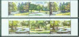 SRB 2007-192-3 SAVE NATUR TREES, SERBIA, 2 X 2v + Labels, MNH - Bäume