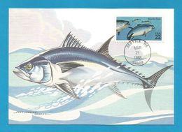 USA 1986 , Bluefin Tuna - Maximum Card - First Day Of Issue March 21 1986 Seattle - Maximumkarten (MC)
