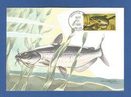 USA 1986 , Catfish - Maximum Card - First Day Of Issue March 21 1986 Seattle - Maximumkarten (MC)