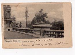 NELS Série 34 N° 9 -  Souvenir De LIEGE  - Le Boeuf Au Repos - Belgique