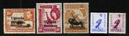 UGANDA, Revenues, Used, F/VF, Cat. £ 12 - Uganda (...-1962)