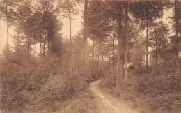 ORROIT - MONT-de-L'ENCLUS - Route Sous Bois - Kluisbergen