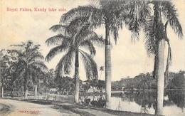 Sri Lanka (Ceylon, Ceylan) - Royal Palms, Kandy Lake Side - Skeen-photo - Carte Non Circulée - Sri Lanka (Ceylon)
