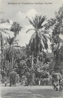 Sri Lanka (Ceylon, Ceylan) - Entrance To Peradeniya Garden - Carte Plâté Ltd, N° 103 Non Circulée - Sri Lanka (Ceylon)