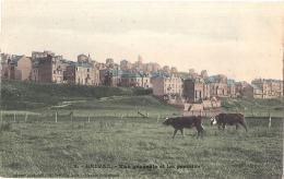 ****  80  ***  ONIVAL  Vue Générale Et Les Prairies - Superbe Neuve /unused Vaches - Onival
