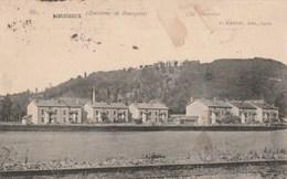 Carte Postale Ancienne De L'Isère -environs De Bourgoin - Boussieux - Bourgoin