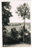 Visé, Ile Robinson (pk41803) - Visé