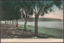 The Lake, Florida, Near Johannesburg, South Africa, C.1910 - Sallo Epstein Postcard - South Africa