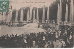 PARC DE VERSAILLES  GRANDES EAUX BASSIN DE NEPTUNE - Versailles (Château)