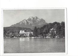 19241 - Hotel St. Niklausen B. Luzern (format 10 X 15) - LU Lucerne