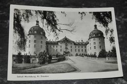 353     Schloss Moritsburg  Dresden - Museen