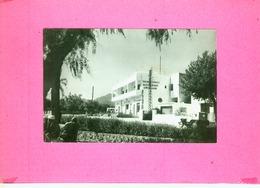 CP.  TAZA.  LE  RESTAURANT  EXCELSIOR.  CABINET  CHIRURGIEN  DENTISTE - Maroc