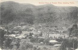 Sri Lanka (Ceylon, Ceylan) - General View Of Nuwara Eliya, Showing Pedro - Edition Plâtré & Co. - Sri Lanka (Ceylon)