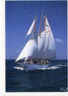 """Le"""" Croix Du Sud""""(LOT BBA) - Sailing Vessels"""