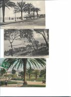 06 NICE LOT DE 3 CARTES PROMENADE DES ANGLAIS PALAIS ET JETEE ENTRE LES PALMIERS - Sets And Collections