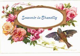 CPA N°18694 - LOT DE 5 CARTES DE CHANTILLY - Chantilly