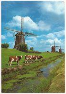 Postal - Holanda LEIDSCHENDAM - MOLINOS - Leidschendam