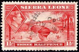 SIERRA LEONE 1938 King George VI - Rice Harvesting - 1 1/2 D - Red FU - Sierra Leone (...-1960)