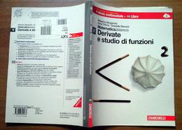 Matematica Modulo V Bianco - Derivate E Studio Di Funzioni - Zanichelli - Matematica E Fisica