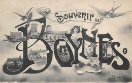 Souvenir De BOYNES - Fantaisie - France