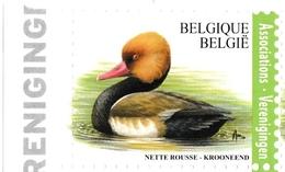 1. BUZIN  LA NETTE ROUSSE - 1985-.. Birds (Buzin)