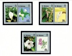 St Helena 616-18 MNH 1994 Flowers In Pairs - Sainte-Hélène