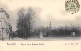 BRUXELLES - Avenue De La Joyeuse Entrée - Lanen, Boulevards
