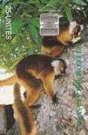 TELECOM MALGASY S.A.  25 UNITES - Madagascar