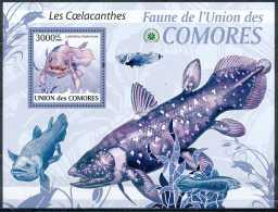 D- BL - Union Des Comores - Les Coelacanthes - Latimeria Chalumnae - Poisson - Poissons