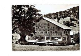 Cpm - 74 - Les Gets - HOTEL LA MARMOTTE Et Chêne Millénaire - Arbre - Confiserie - Groupe D'enfants Assis Dans L'herbe - Les Gets