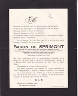 BADEN-POWELL Boy-Scouts Rio-de-Janeiro Baron De SPRIMONT 1894 - 1927 Ixelles Famille De BELLEFROID-d'OUDOUMONT - Obituary Notices