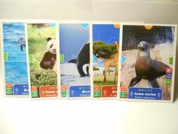 KINDER 5 CARD ANIMAL ACTION - Zonder Classificatie