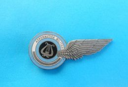 ARGENTINE AIR FORCE - Vintage Enamel Pilot Wings Very High Quality Pin Badge * Aviation Luftwaffe Aeronautica Militare - Aviation