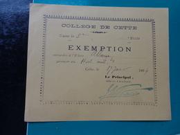 College De CETTE  Billet D'exemption-année 1894-eleve Alberge Coloris Jaune - Diploma & School Reports