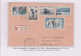 TAAF - Expedition Polaire - Kerguelen - Galliéni - Recommandé - Affranchissement - Covers & Documents