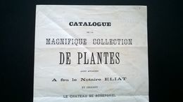 CATALOGUE DES PLANTES DU NOTAIRE ELIAT ET ORNANT LE CHÂTEAU DE SCHEPDAEL VENTE PUBLIQUE AU CHÂTEAU LE 1889. Belgique. - A. Plantes Vertes