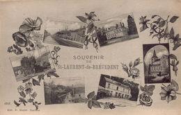 SAINT LAURENT DE BREVEDENT - Francia