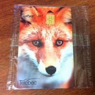 CANADA QUÉBEC TÉLÉCARTE CARTE TÉLÉPHONIQUE LAPUCE TÉLÉBEC RENARD FOX PHONECARD CARD POUR COLLECTION NEUVE - Canada