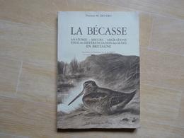 La Bécasse Anatomie Moeurs Migrations Différenciation En Bretagne Par Devort 1977  (D) - Bretagne