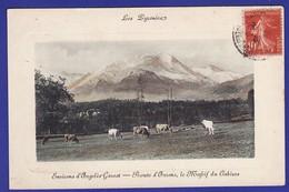 PYRENEES Argeles Gazost Troupeau De Vache Et Massif Du Cabizos 1919 ( 1 INFIME CORNURE SINON TTB état )) Ww 1155) - Otros Municipios
