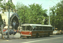 BUS AUTOBUS TROLLEY TROLLEYBUS ZIU BKV CAR LADA ZHIGULI BUDAPEST ZOO ELEPHANT POLAR BEAR ANIMAL * Top Card 0734 Hungary - Bus & Autocars
