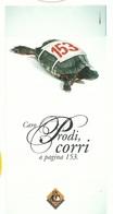 TURTLE TORTOISE TORTUE TARTARUGA TORTUGA - BROCHURE Deplian LAV - Advertising
