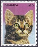 Paraguay 1984 Tiere Fauna Animals Katzen Cats Chat Gato Gatto Haustiere Pets, Mi. 3817 ** - Paraguay