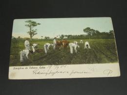 Cuba 1904 Picture Postcard To Austria Corner Fold *8812 - Cuba