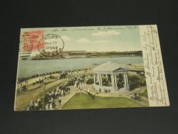 Cuba 1907 Palm Tree Maximum Postcard To France *8831 - Cuba