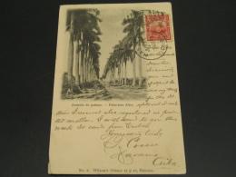 Cuba 1912 Picture Postcard To Madagascar Corner Folds *8859 - Cuba